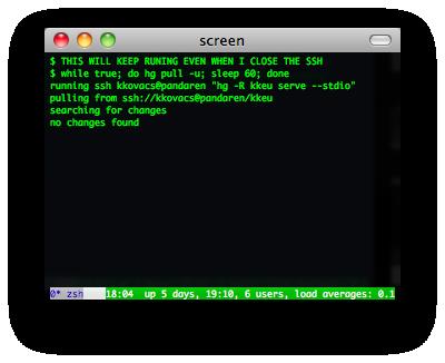 gnu_screen_screenshot